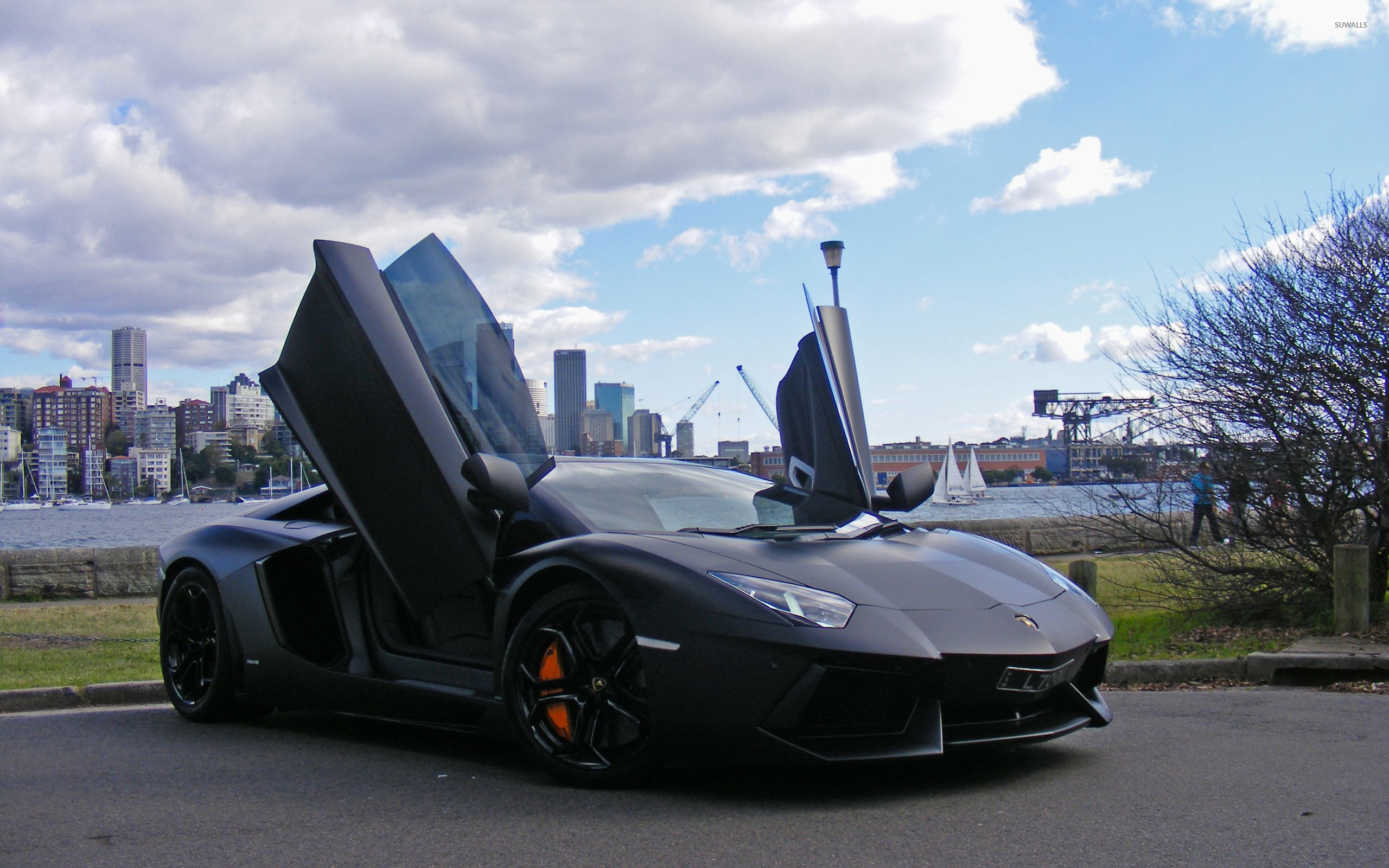 Lamborghini Aventador With Doors Open Wallpaper Car Wallpapers