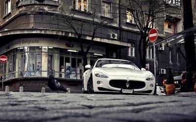 Maserati GranTurismo [5] wallpaper