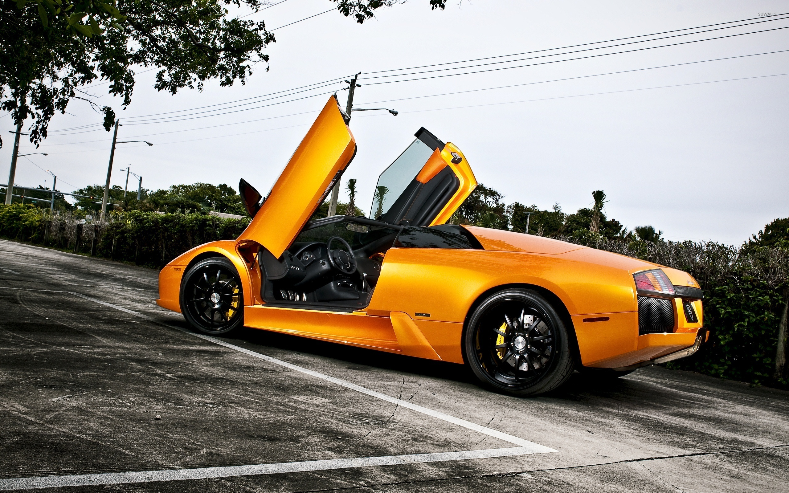 Orange Lamborghini Murcielago with opened doors wallpaper ...