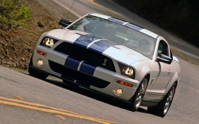 Shelby Mustang [6] wallpaper