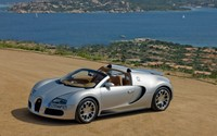 Silver Bugatti Veyron front side view wallpaper 2880x1800 jpg