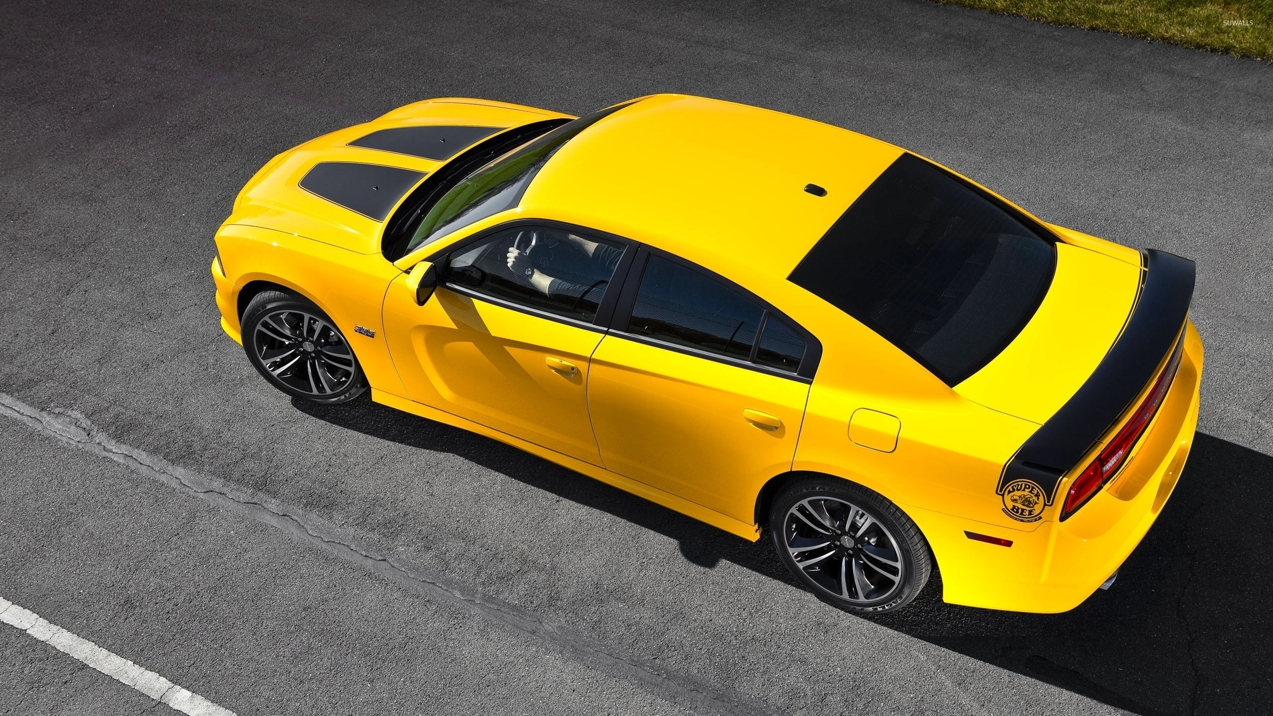 Top view of a Dodge Charger Super Bee wallpaper - Car wallpapers ...