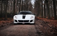 White Ferrari 599 GTO through the forest wallpaper 2560x1600 jpg