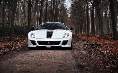 White Ferrari 599 GTO through the forest wallpaper