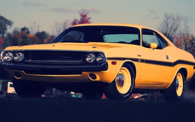 Yellow Dodge Challenger front side view wallpaper