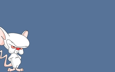 Brain from Pinky and the Brain wallpaper