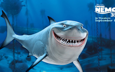 Bruce from Finding Nemo wallpaper