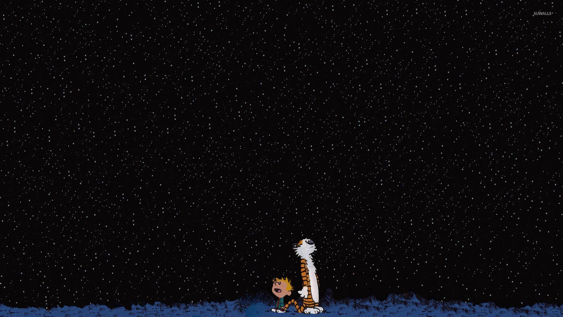 Calvin And Hobbes Watching The Stars Wallpaper