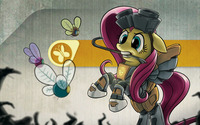 Fluttershy Freeman and Parasprite wallpaper 1920x1080 jpg