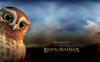 Gylfie - The Owls of Ga'Hoole wallpaper 1920x1080 jpg