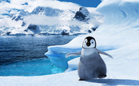 Happy Feet Two [3] wallpaper 1920x1200 jpg