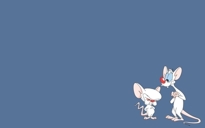Pinky and Brain - Pinky and the Brain wallpaper