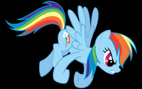 Rainbow Dash [7] wallpaper 2560x1600 jpg