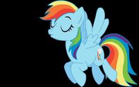 Rainbow Dash [8] wallpaper 2560x1600 jpg