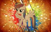 Rainbow Dash - My Little Pony Friendship is Magic [6] wallpaper 2560x1440 jpg