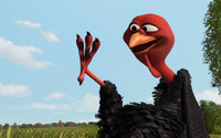 Reggie - Free Birds wallpaper 2560x1600 jpg