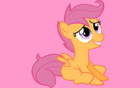 Scootaloo [2] wallpaper 2560x1600 jpg