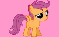Scootaloo wallpaper 2560x1600 jpg