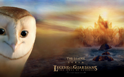 Soren - The Owls of Ga'Hoole wallpaper