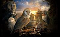 The Owls of Ga'Hoole wallpaper 1920x1080 jpg
