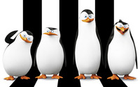 The Penguins of Madagascar wallpaper 2560x1600 jpg