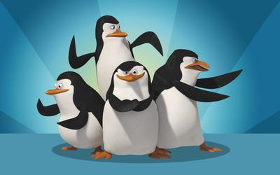 The Penguins of Madagascar [2] wallpaper
