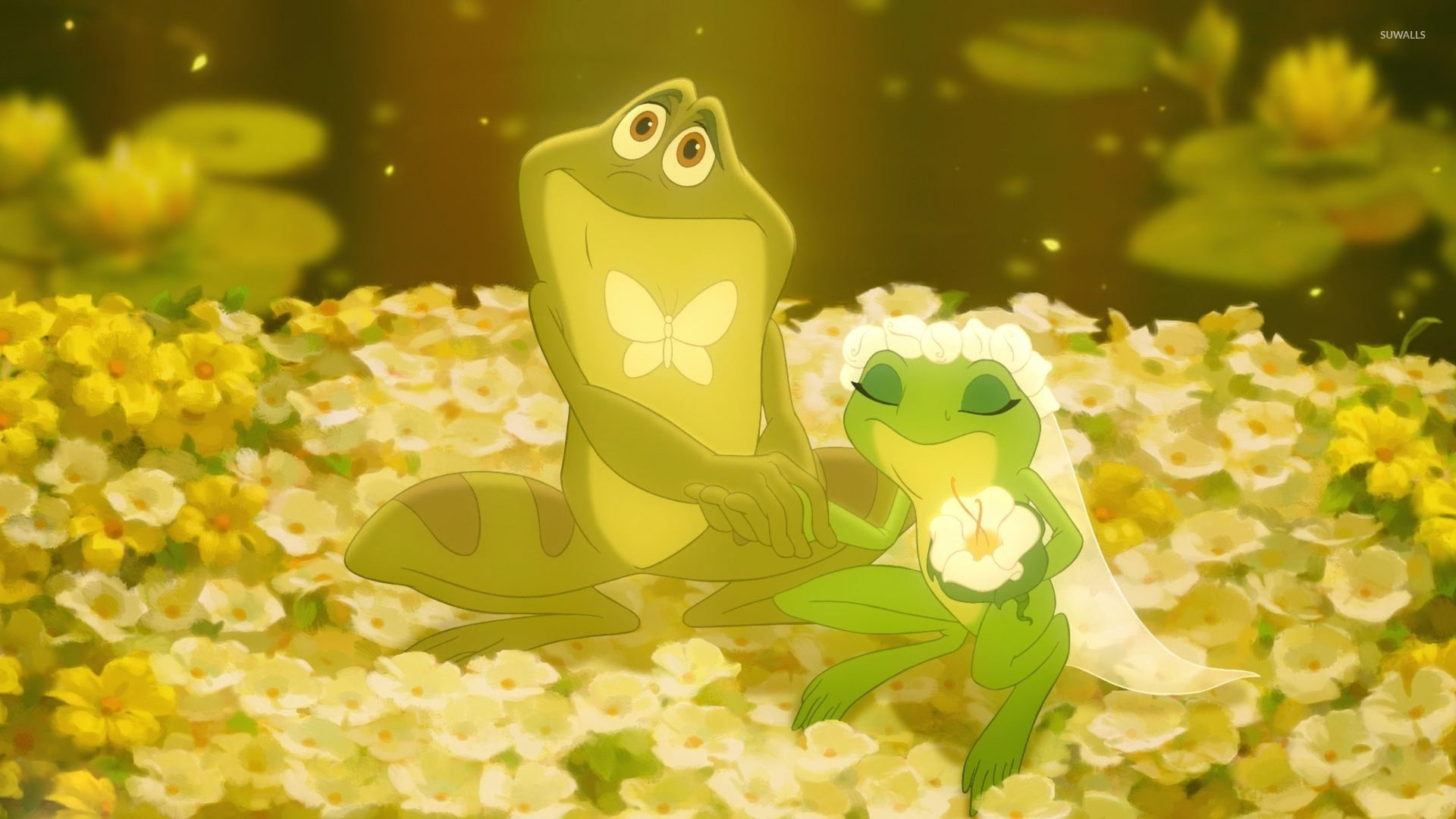 The Princess And The Frog 2 Wallpaper Cartoon Wallpapers 33134