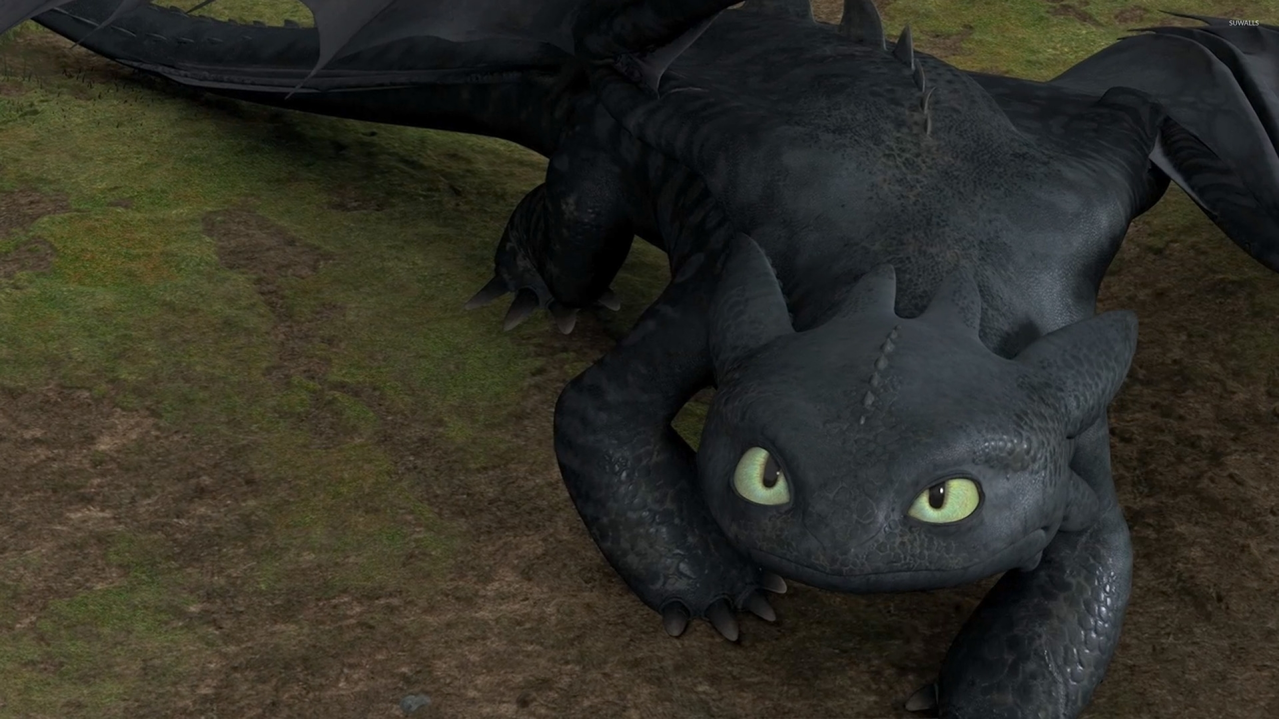 Toothless In How To Train Your Dragon Wallpaper Cartoon