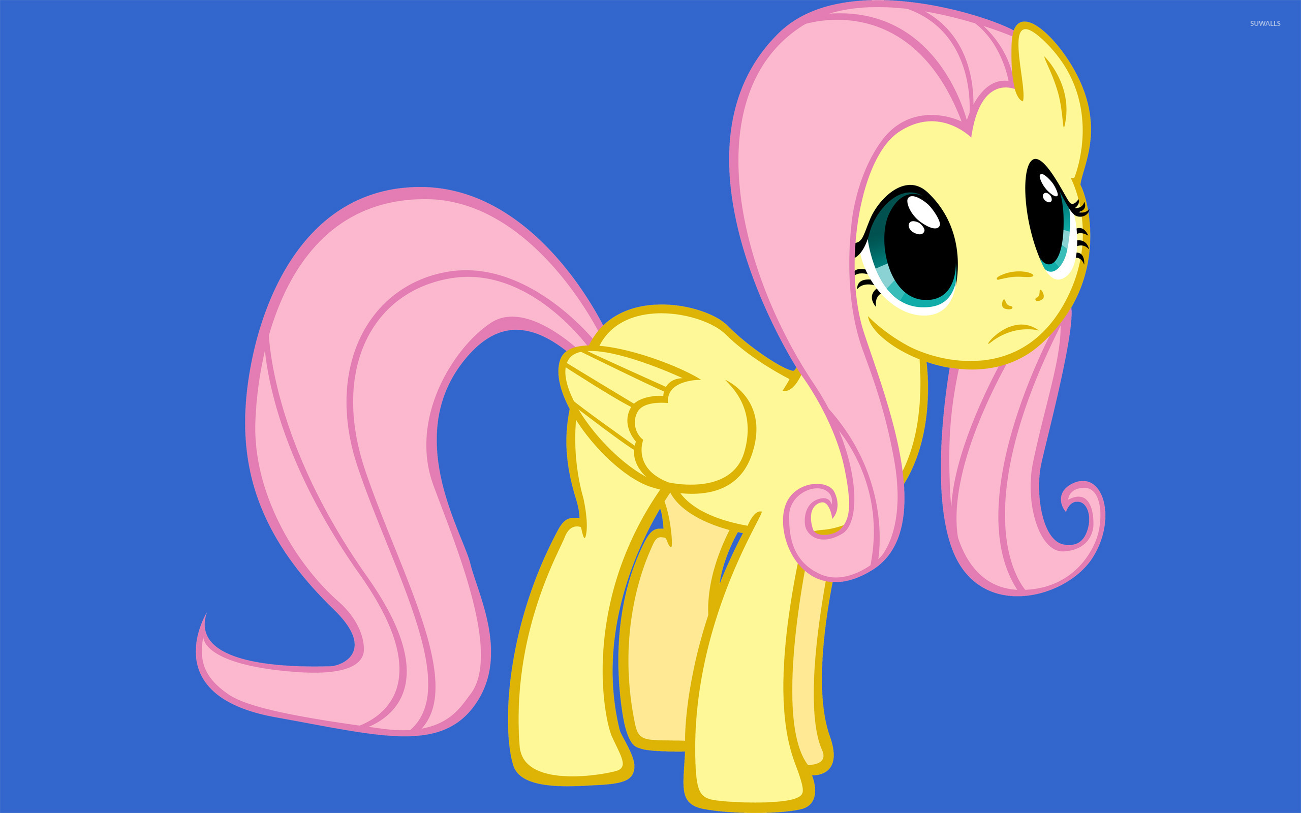 young fluttershy wallpaper cartoon wallpapers 7491