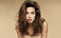 Angelina Jolie [2] wallpaper 1920x1200 jpg
