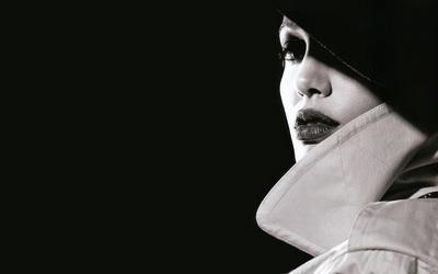 Angelina Jolie [21] wallpaper