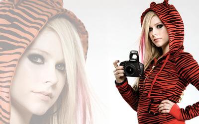 Avril Lavigne [25] wallpaper