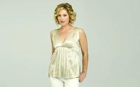Christina Applegate with blonde curly hair wallpaper 1920x1200 jpg