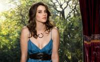 Cobie Smulders [3] wallpaper 2560x1600 jpg