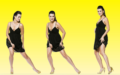 Cote de Pablo [4] wallpaper