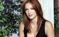 Danneel Harris wallpaper 1920x1200 jpg