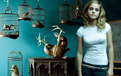 Emma Watson [42] wallpaper