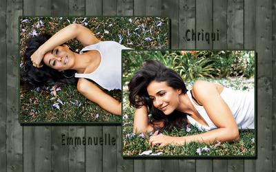 Emmanuelle Chriqui [8] wallpaper