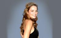 Erica Durance [4] wallpaper 2560x1600 jpg