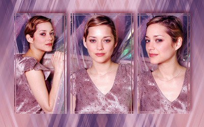 Marion Cotillard [4] wallpaper