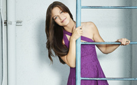 Melissa Benoist on a ladder wallpaper 1920x1200 jpg