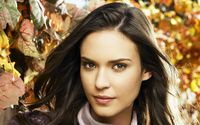 Odette Annable [2] wallpaper 2560x1600 jpg