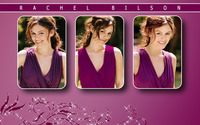 Rachel Bilson different poses in a purple top wallpaper 1920x1080 jpg