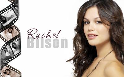 Rachel Bilson in different poses wallpaper