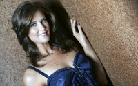 Sarah Lancaster in a blue top leaning on the wall wallpaper 1920x1080 jpg