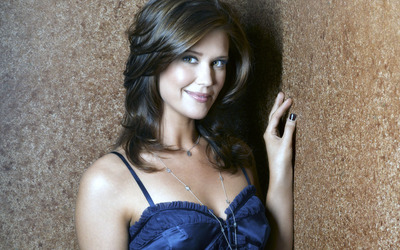Sarah Lancaster leaning on the wall wallpaper