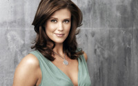 Sarah Lancaster smiling in a blue top wallpaper 1920x1080 jpg