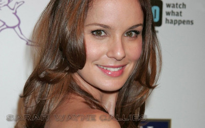 Sarah Wayne Callies wallpaper