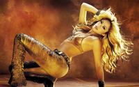 Shakira [19] wallpaper 1920x1200 jpg