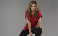 Stana Katic [5] wallpaper 1920x1200 jpg